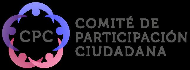 comite de particicpacion ciudadana